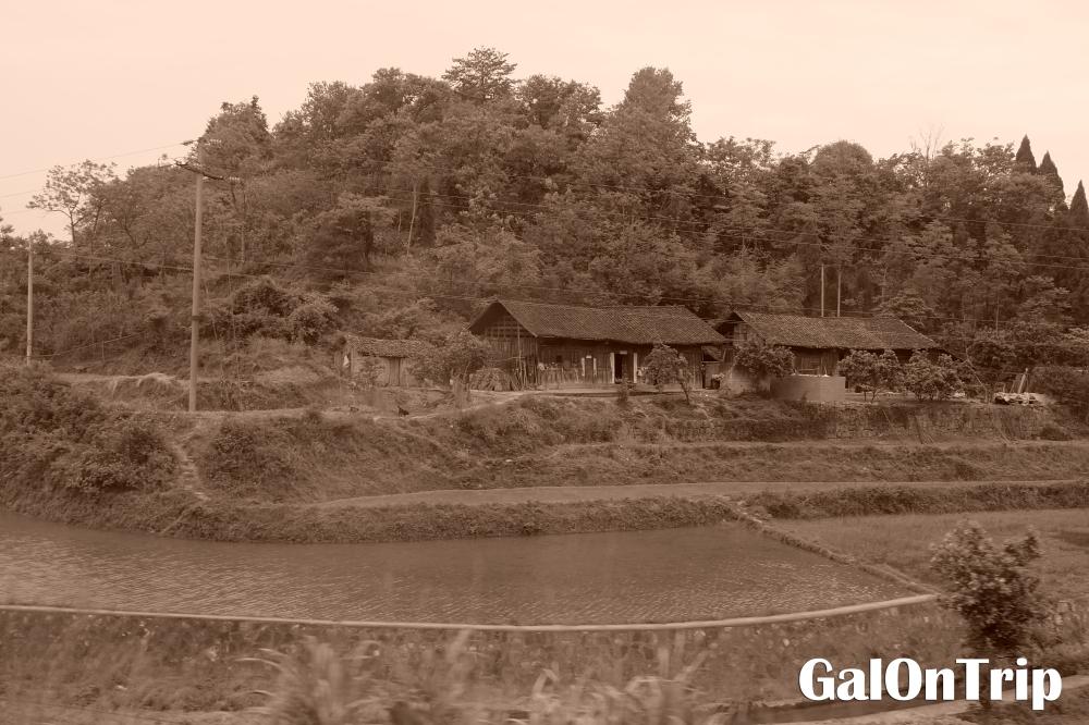 miao traditional house