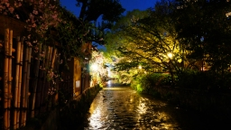Photography of Gion Shirakawa Scenic View in the Evening