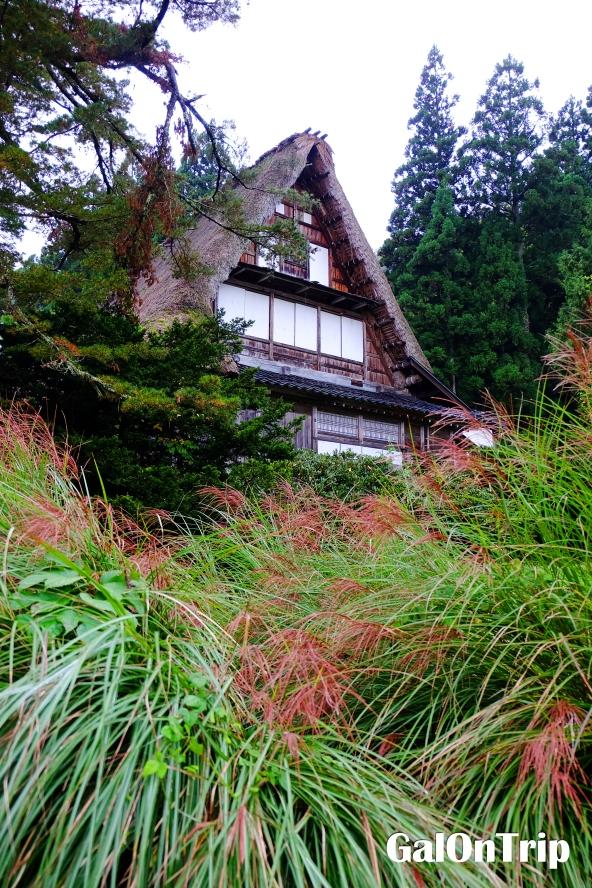 gokayama ainokura